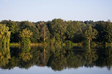See mit Bäumen, die sich im klaren Wasser spiegeln. Standort: Deutschland, Nordrhein-Westfalen, Pröbstingsee