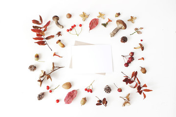Autumn styled botanical arrangement. Blank card mockup scene. Composition of mushrooms, pine cones, beechnuts, colorful dried leaves and rowan berries. White table background. Fall frame, flat lay