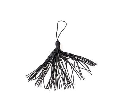Silk tassel isolated on white background for creating graphic concepts