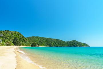 tropical beach in abel tasman national park, new zealand 40