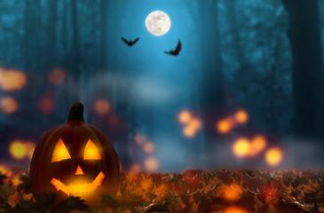jack laterne im halloween wald