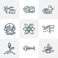 Landscape icons line style set with walnut, eco food, flower basket and other fish skeleton
