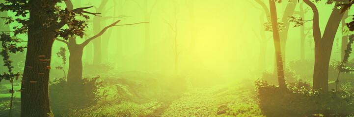 Foto op Aluminium Zwavel geel magic forest at sunrise, sunshine in beautiful landscape