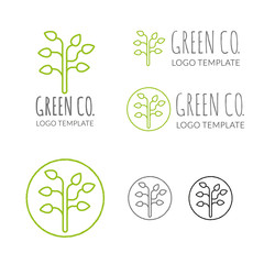 Green Company Vector Logo Template
