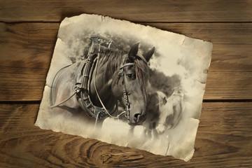 altes Foto mit Arbeitspferd