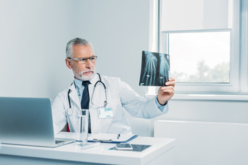 concentrated mature male doctor analyzing x-ray picture at table in office