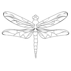 book coloring dragonfly