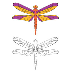 isolated, book coloring dragonfly