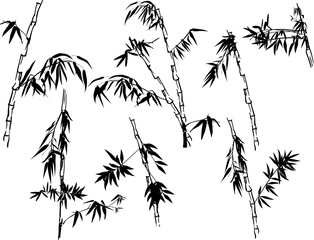 isolated black bamboo plant outlines collection
