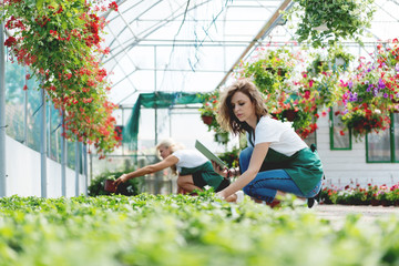 Technology and horticulture