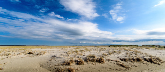 Wall Mural - Nordsee, Strand auf Langeoog: Dünen, Meer, Entspannung, Auszeit, Ruhe, Erholung, Ferien, Urlaub, Glück, Freude,Meditation :)