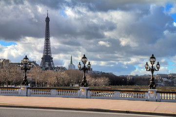 Beautiful view of a lantern on the Pont Alexandre III in Paris, with the Eiffel tower in the background, on a cloudy winter day