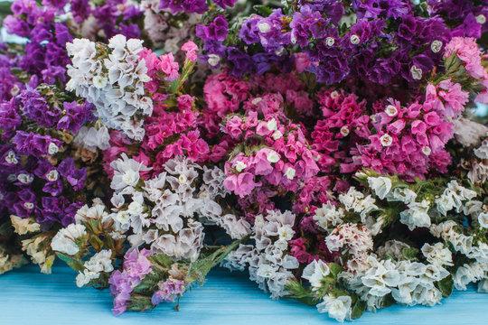 Colorful statice flowers. Close up. Multicolored limonium flowers.