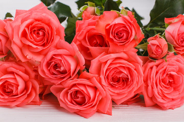 Red roses close up. White wooden desk background.