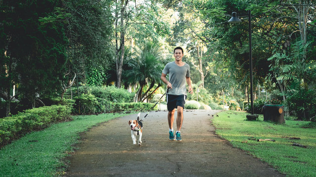 the man running with his puppy beagle dog at the garden