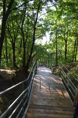 мост в неизвестность