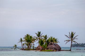 Cocotiers Palmiers Iles San Blas Panama Caraïbes Amérique Centrale