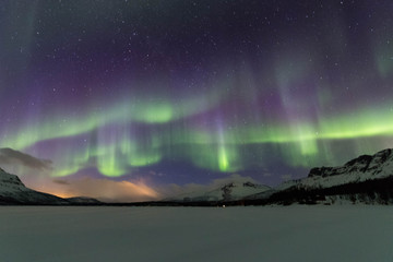 Nothern lights in Lofoten islands