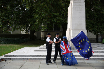 An anti-Brexit demonstrator chats to police officers outside the Houses of Parliament, in London