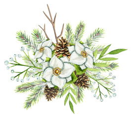 Christmas winter decoration composition with spruce, pinecones,white flowers, branches with berries and leaves isolated on white background. Watercolor hand drawn illustration