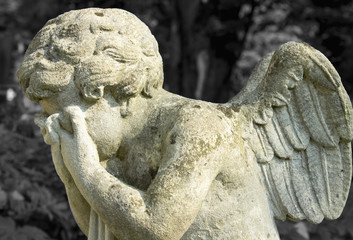 angel cries in the cemetery