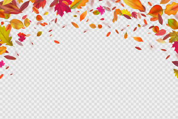 Autumn falling leaves. Autumnal forest foliage fall. Vector illustration isolated on white background. Withering leaf background, foliage banner with place