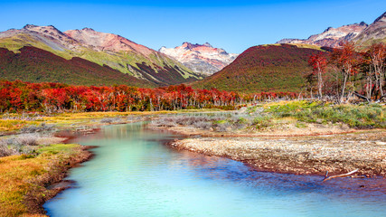 Beautiful landscape of lenga forest, mountains at Tierra del Fuego National Park, Patagonia