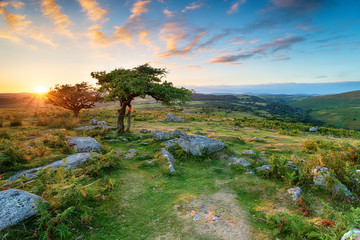Wall Mural - Dartmoor National Park