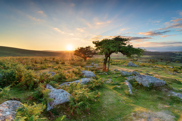 Wall Mural - Sunset at Combestone on Dartmoor