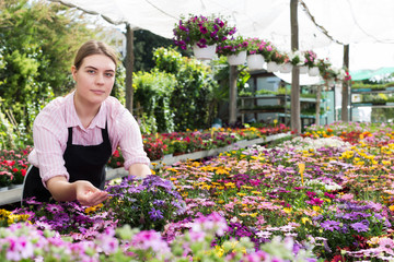 florist woman working in sunny greenhouse