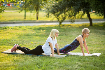 two adult women, go in for sports and gymnastics in the summer on the street in the park