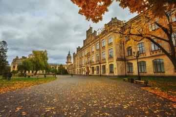 beautiful colorful autumn park