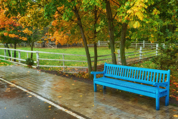 old wooden bench in city park.