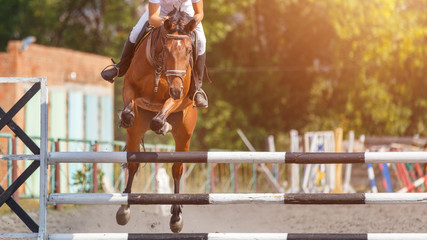 Show jumping sport event background with copy space