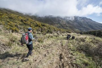 Hiking Mount Herbert Trail, Christchurch, Canterbury, New Zealand