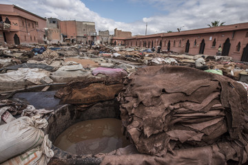 Leather tannery in Marrakesh, Morocco