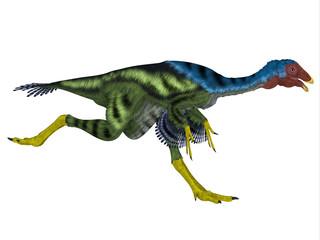 Caudipteryx Dinosaur Running