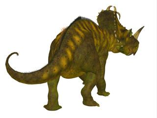 Centrosaurus Dinosaur Tail