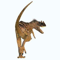 Ceratosaurus Dinosaur Tail