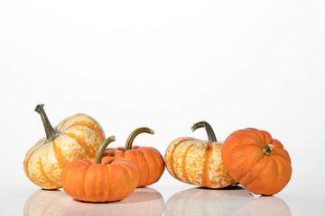 Halloween pumpkins on a white background