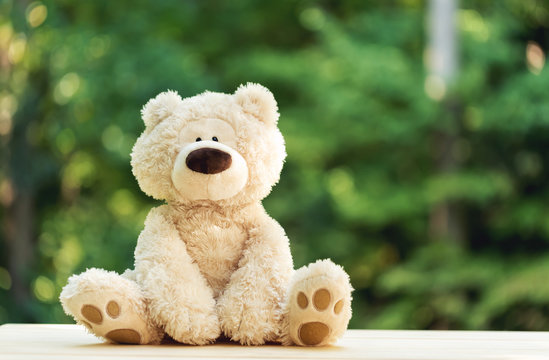 A teddy bear on a shiny green forest background