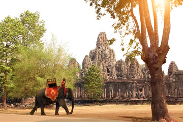 Elephant and Prasat Bayon Temple, Angkor Wat complex, Siem Reap, Cambodia