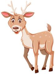 Happy cute deer white background