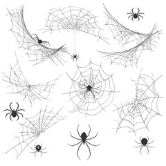Spider with cobweb. Venom spider vector illustration for halloween background graphics, vintage creepy corner spiderweb decoration