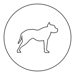 Pit bull terrier icon black color in round circle