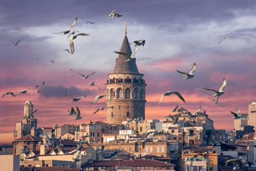 Galata Tower in Istanbul Turkey with seagulls on the foreground
