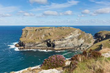 Fototapete - Coast path view near Tintagel Cornwall England UK