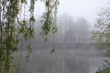 Mystical Landscape, Brugge, Minnewaterpark, Fog