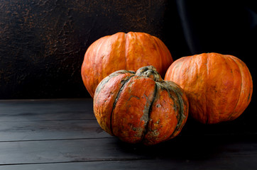 Autumn pumpkins on black