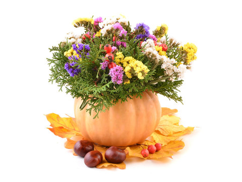 Fall decoration, flowers in pumpkin vase. Chestnuts and autumn leaves. Isolated on white background.